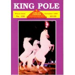 King Pole No.126 December 1999